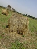 Hay bales in the countryside Stock Images