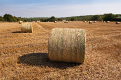 Hay Bales in a Derbyshire Field. Hay bales in a field in the Peak District, Derbyshire, England Royalty Free Stock Photography