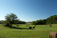Hay Bales Distant River Royalty Free Stock Images