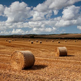 Hay bales, Dorset, UK Royalty Free Stock Images