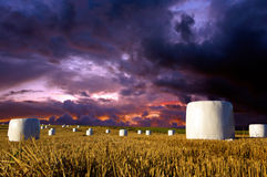 Hay bales on dramatic sky Royalty Free Stock Image