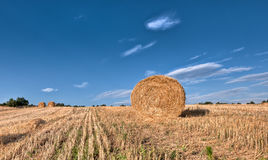 Hay bales in early morning royalty free stock images