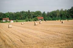 Hay Bales em um campo Foto de Stock
