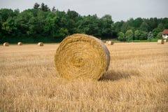 Hay Bales em um campo Imagens de Stock
