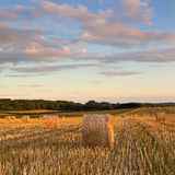 Hay Bales en été, Dorset, R-U Photos stock