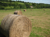 Hay bales in English field 1 Stock Image