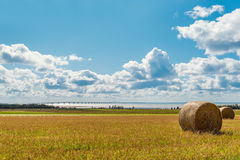 Hay bales on a farm along the ocean with the Confederation Bridg Stock Images