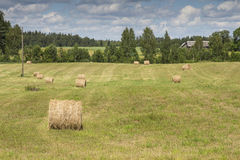 Hay bales on farm field Royalty Free Stock Photos