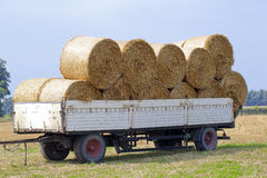 Hay bales on farm land Stock Image