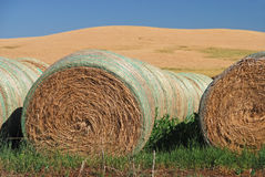 Hay Bales on Farmland Stock Photo