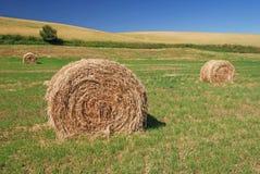 Hay Bales on Farmland stock photo
