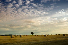 Hay bales in a field. French countryside with hay bales and dramatic sky Stock Photography