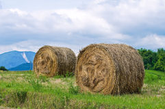 Hay bales field. Royalty Free Stock Photos