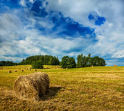 Hay bales on field Royalty Free Stock Photo