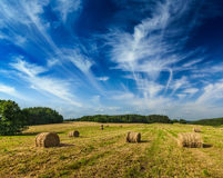 Hay bales on field Stock Photos