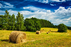 Hay bales on field Stock Photo