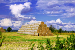 Hay bales on the field and cloudy sky Stock Photos