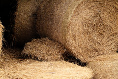 Hay bales in a field ( detail ) Stock Photography