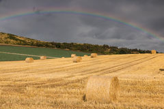 Hay Bales on a Field Royalty Free Stock Photography