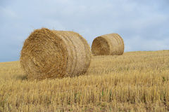 Hay bales on the field after harves Royalty Free Stock Photography