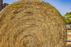 Hay bales on the field after harvest royalty free stock photos