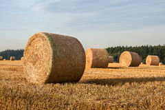 Hay bales on the field after harvest. Hay big bales on the field after harvest Royalty Free Stock Photography