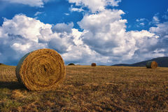 Hay bales on the field after harvest, a clear day. Blue sky, white clouds. Royalty Free Stock Images