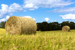 Hay bales on the field after harvest, countryside landscape, beautiful sky Royalty Free Stock Image