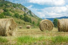 Hay bales on the field after harvest. France Stock Images