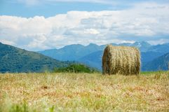 Hay bales on the field after harvest. France Royalty Free Stock Photo