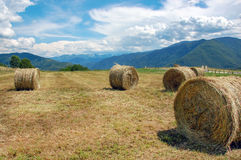 Hay bales on the field after harvest. France Royalty Free Stock Images