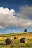 Hay bales on the field after harvest, Hungary Royalty Free Stock Image