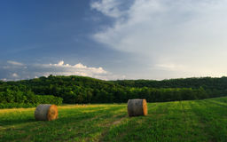 Hay bales on the field after harvest, Hungary Stock Photography