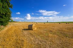 Hay bales on the field. After harvest in Poland royalty free stock images