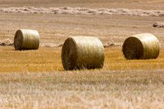 Hay bales on the field after harvest, Poland Stock Photo