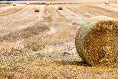 Hay bales on the field after harvest, Poland Stock Photography