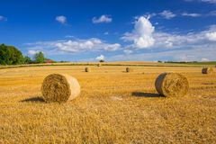 Hay bales on the field. After harvest in Poland stock photography