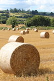 Hay Bales in field. Large circular hay bales in a newly cut with green hills in the background Royalty Free Stock Photography