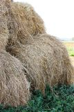 Bales of meadow hay. Hay bales in the field royalty free stock photos