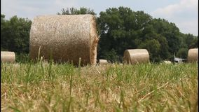 Hay bales in the field stock footage