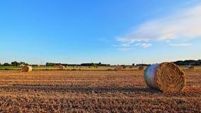 Hay bales field Stock Image