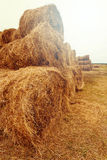 Hay bales on the field at summer Royalty Free Stock Images
