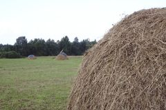 Hay bales in a field at sunset royalty free stock photography