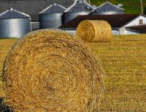 Hay bales. In field surrounded by silos Royalty Free Stock Photos