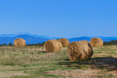 Hay Bales on a field in the Tuscany Italy Royalty Free Stock Photography