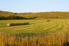 Hay bales and  fields in fall Royalty Free Stock Photography
