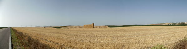 Hay Bales in Fields, Jerez, Cadiz Province, Spain. Harvest time in Jerez showing stripey fields stock photography