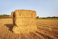 Hay bales in the fields from Portugal Stock Images