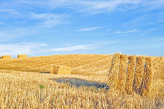 Hay bales in the fields from Portugal Royalty Free Stock Image