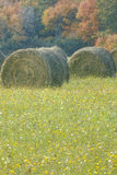 Hay Bales in Flower Field. Photo impression of bales of hay in wildflowers Royalty Free Stock Photo